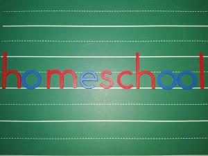 Montessori Homeschool Program
